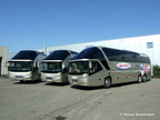 Lauwers Neoplan Duo 006
