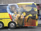Oad Bova Futura Lion King 002