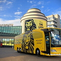 Oad 537 Lion King Scheveningen