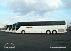 Lanting MAN Lion Coach 008