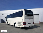 Coach2Travel MAN Lions  010